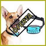 Collares de adiestramiento perros amazon
