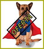 Capas de superman para perros