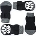 Calcetines impermeables para perros